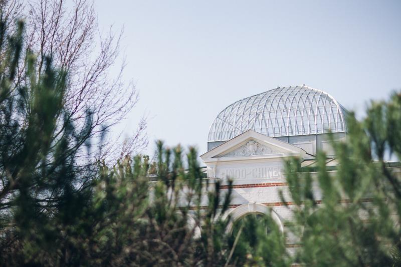 jardin agronomie tropicale